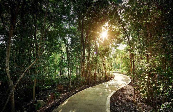 senderos-norte-ciudad-mayakoba-slide-terrenos-en-venta-playa-del-carmen-cancun-riviera-maya-mexico-ciudad-mayakoba-imagen-galeria-05