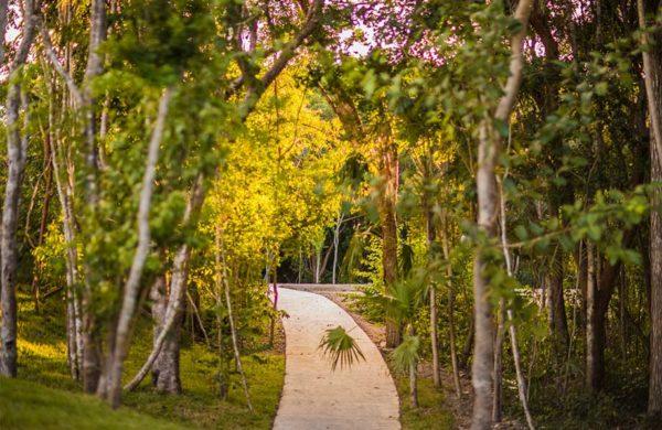 senderos-norte-ciudad-mayakoba-slide-terrenos-en-venta-playa-del-carmen-cancun-riviera-maya-mexico-ciudad-mayakoba-imagen-galeria-08