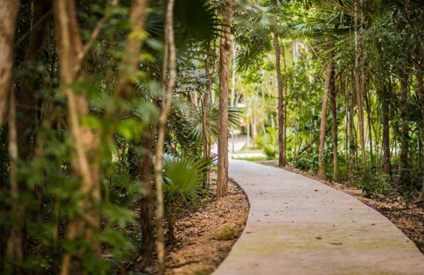 senderos-norte-ciudad-mayakoba-slide-terrenos-en-venta-playa-del-carmen-cancun-riviera-maya-mexico-ciudad-mayakoba-imagen-galeria-13