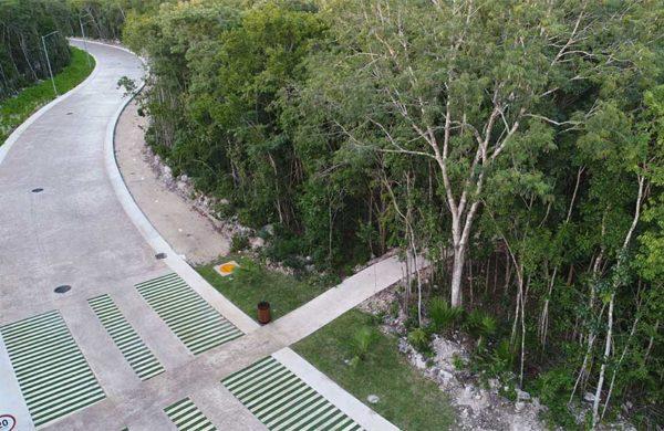 senderos-norte-ciudad-mayakoba-slide-terrenos-en-venta-playa-del-carmen-cancun-riviera-maya-mexico-ciudad-mayakoba-imagen-galeria-20